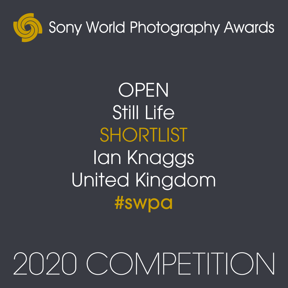Sony World Photography Awards Badge Ian Knaggs